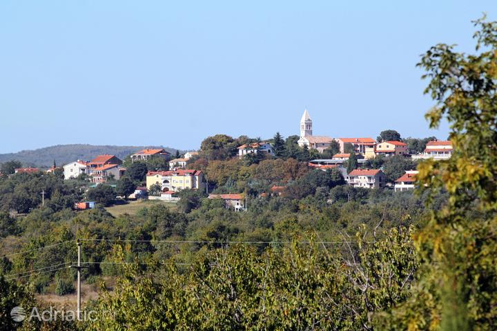 Baderna dans la côte Središnja Istra (Istra)