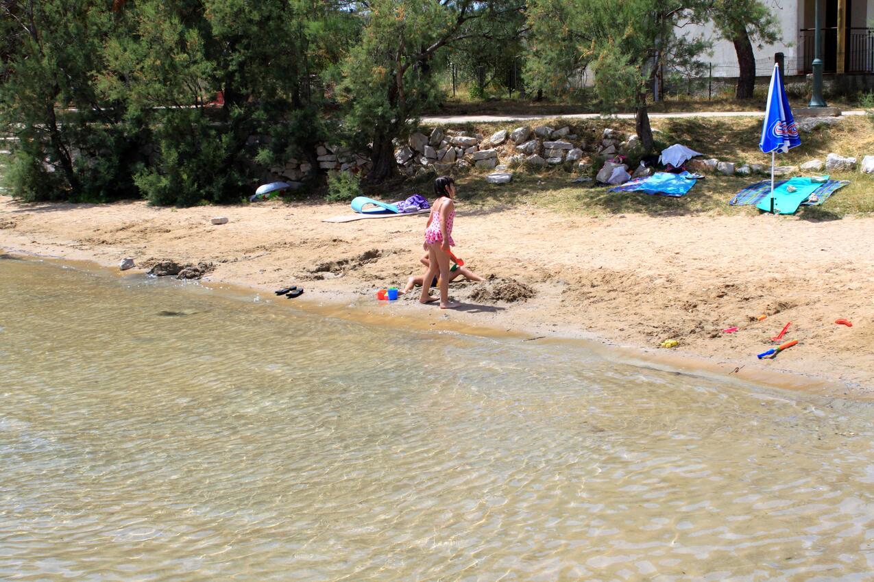 Ferienwohnung im Ort Dobropoljana (Paaman), Kapazität 4+1 (1012349), Nevidane, Insel Pasman, Dalmatien, Kroatien, Bild 33