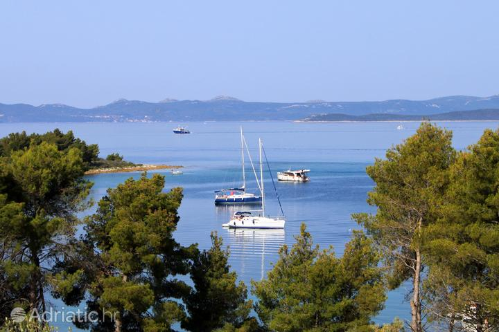 Kunčabok on the island Ugljan (North Dalmatia)