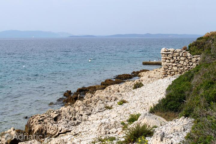 Čerenje bay on the island Pašman (North Dalmatia)