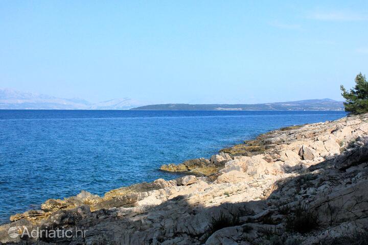 Fabrice on the island Šolta (Srednja Dalmacija)