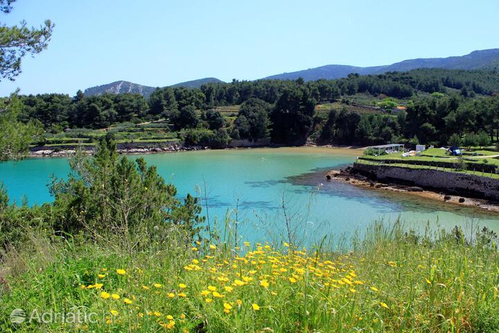 Grebišće on the island Hvar (Srednja Dalmacija)