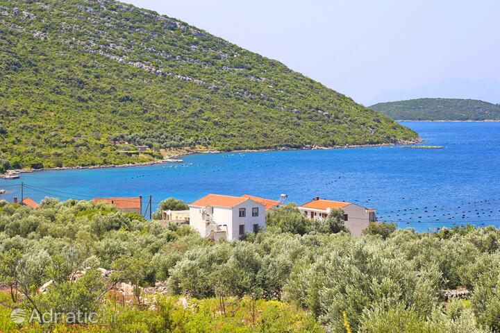Blaževo in riviera Pelješac (South Dalmatia)