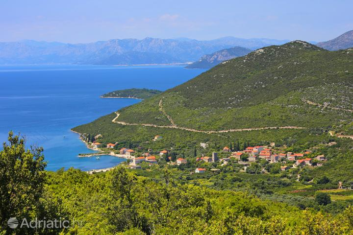 Brijesta na riwierze Pelješac (Južna Dalmacija)