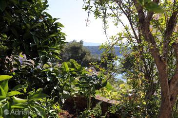 Terrace   view  - A-10049-c