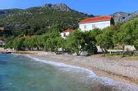 Apartments by the sea Viganj (Pelješac) - 10140