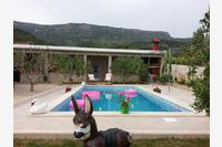 Дом для отдыха с бассейном Bol (Brač) - 11016