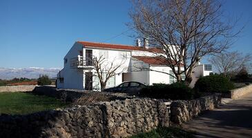Zaton, Zadar, Objekt 11130 - Ubytování s písčitou pláží.