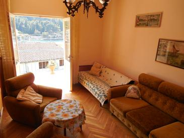 Stomorska, Living room in the apartment, (pet friendly) and WiFi.