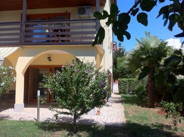 Novigrad, Novigrad, Obiekt 11242 - Apartamenty ze żwirową plażą.