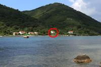 Apartments by the sea Broce (Pelješac) - 11282
