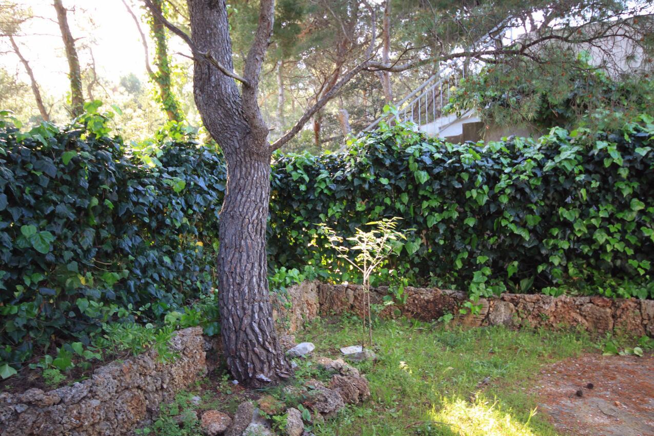 Ferienwohnung im Ort Mudri Dolac (Hvar), Kapazität 4+1 (1012639), Vrbanj, Insel Hvar, Dalmatien, Kroatien, Bild 13