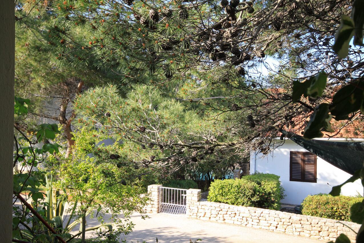 Ferienwohnung im Ort Mudri Dolac (Hvar), Kapazität 2+2 (1012641), Vrbanj, Insel Hvar, Dalmatien, Kroatien, Bild 11