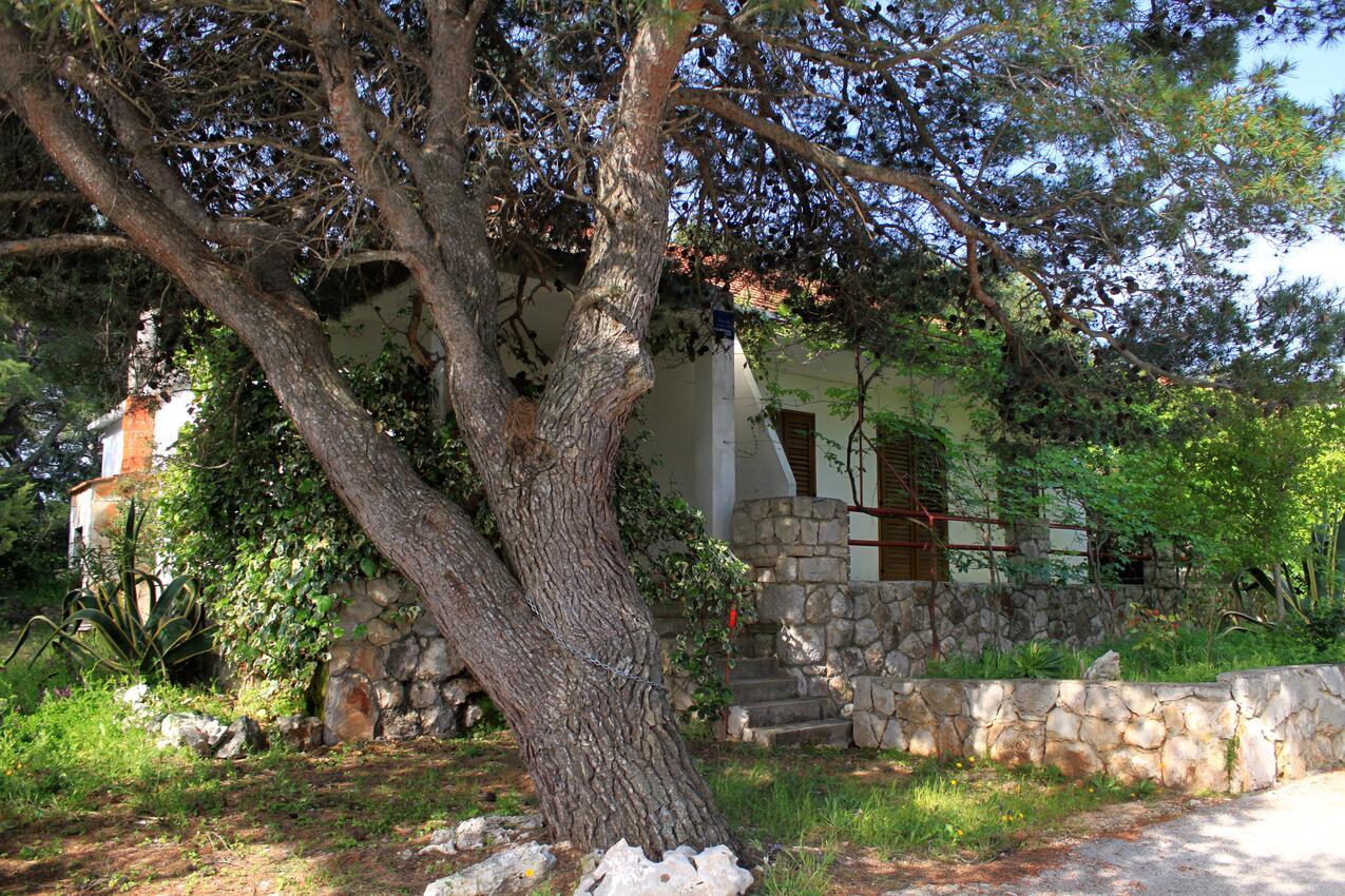 Ferienwohnung im Ort Mudri Dolac (Hvar), Kapazität 4+1 (1012639), Vrbanj, Insel Hvar, Dalmatien, Kroatien, Bild 17