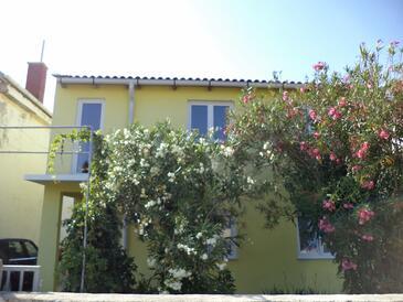Vir, Vir, Property 11812 - Apartments in Croatia.