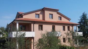 Dajla, Novigrad, Property 11845 - Apartments with pebble beach.