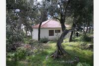 Kuća za odmor s parkingom Sumartin (Brač) - 12047