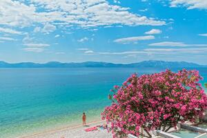 Apartments by the sea Podaca, Makarska - 13974
