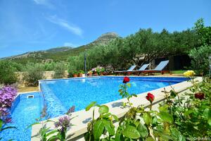 Family friendly house with a swimming pool Bol, Brač - 14291