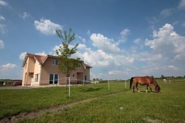 Bilje, Slavonija, Property 14318 - Rooms in Croatia.