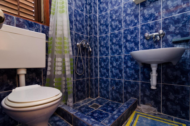 Pještata Bathroom 1 In The Apartment Dopusteni Kucni Ljubimci I Wifi