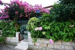 Apartmány u moře Lovište, Pelješac - 15150