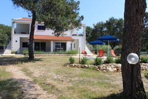 Apartments by the sea Verunić, Dugi otok - 15209