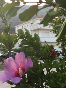 Podstrana, Split, Objekt 16032 - Ubytování s písčitou pláží.