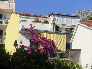 Podgora, Makarska, Objekt 16159 - Ubytování v blízkosti moře s oblázkovou pláží.