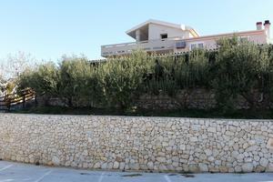 Apartments with a parking space Kolan, Pag - 16482