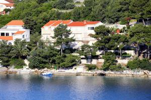 Apartments by the sea Racisce (Korcula) - 165