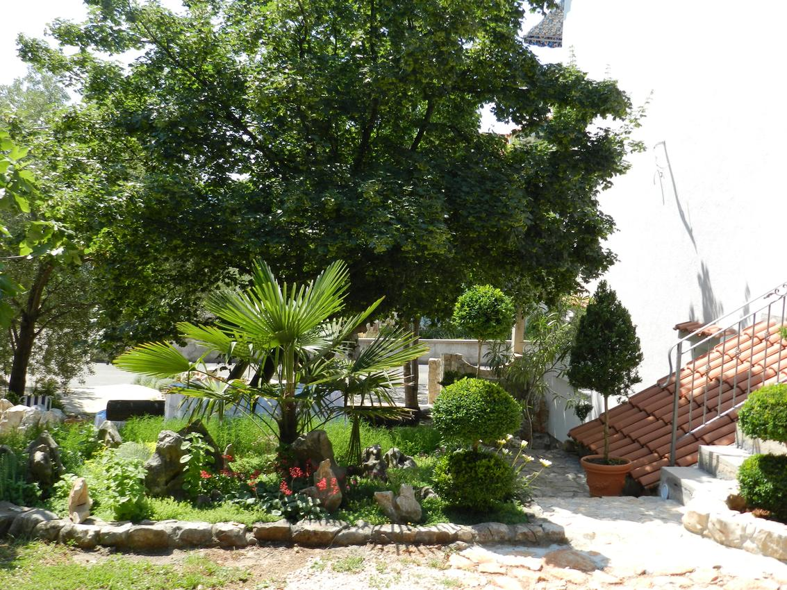 Ferienwohnung Studio Appartment im Ort Sveti Vid (Krk), Kapazität 2+0 (2604829), Sveti Vid-Miholjice, Insel Krk, Kvarner, Kroatien, Bild 11