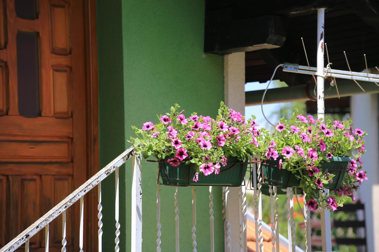 Ferienwohnung im Ort Peruai (Velebit), Kapazität 4+2 (2631071), Perusic, , Kvarner, Kroatien, Bild 39