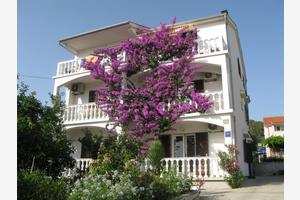 Apartments by the sea Barbat, Rab - 17620