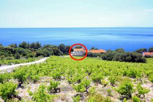 Family friendly seaside apartments Dingač - Borak, Pelješac - 18060