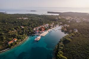 Apartments by the sea Molat - 18433