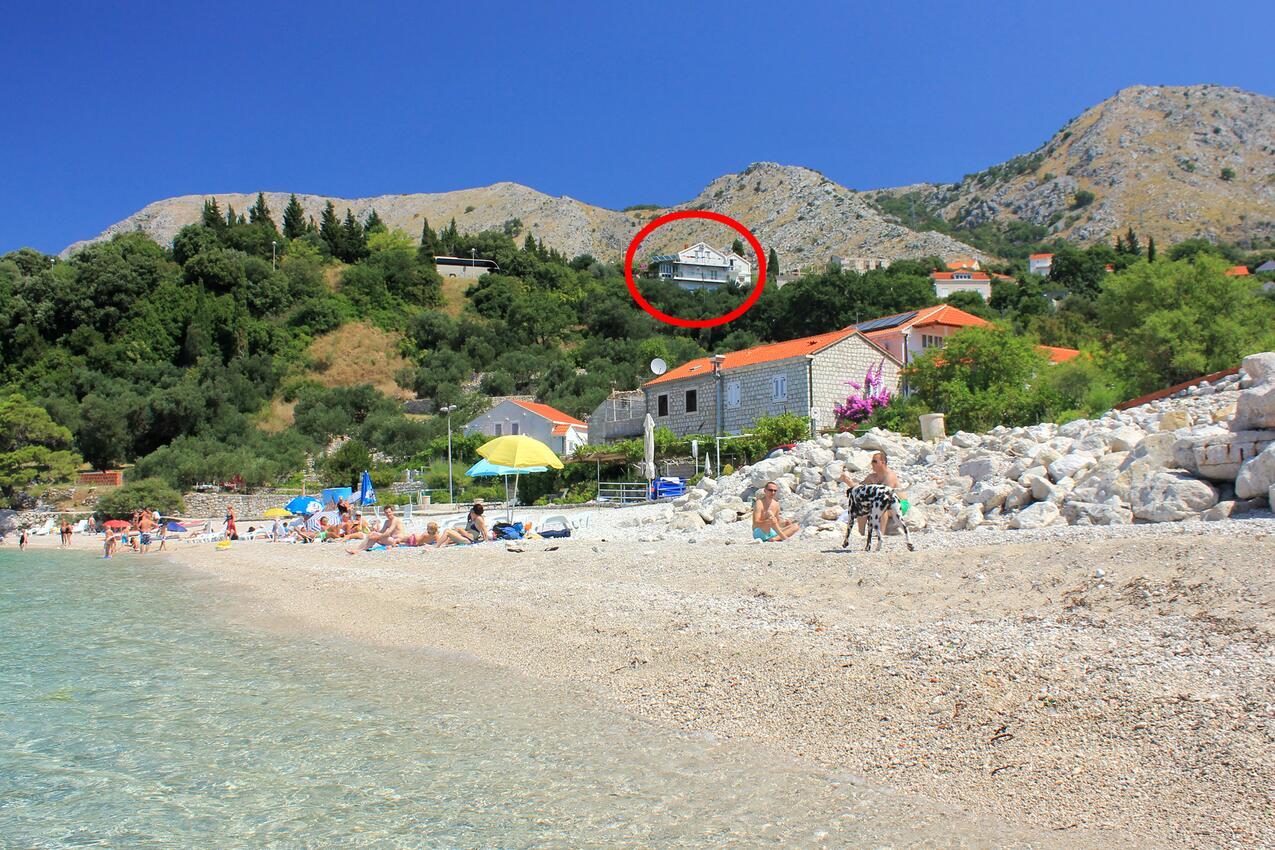 Appartement de vacances Studio Appartment im Ort Plat (Dubrovnik), Kapazität 2+1 (2077391), Plat, , Dalmatie, Croatie, image 13