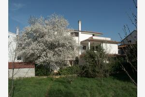 Apartmány s parkovištěm Rovinj - 2226