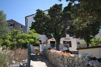 Apartments and rooms with parking space Ćunski (Lošinj) - 2498