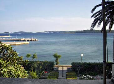 Terrace   view  - A-251-b