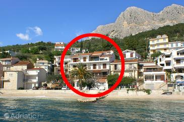 Podgora, Makarska, Property 2573 - Apartments near sea with pebble beach.