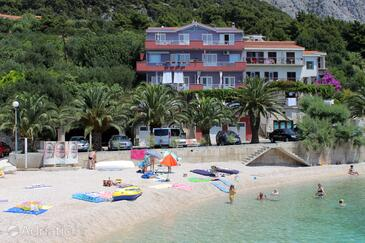 Podgora, Makarska, Property 2616 - Apartments and Rooms near sea with pebble beach.