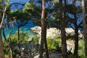 Apartments by the sea Brela (Makarska) - 2713