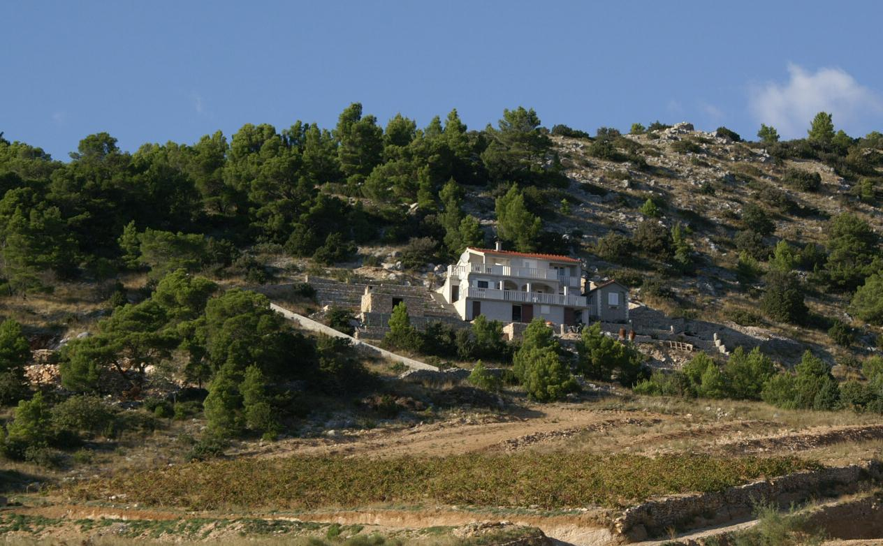 Appartement de vacances im Ort Vela Farska (Brac), Kapazität 4 (2142020), Nerezisca, Île de Brac, Dalmatie, Croatie, image 17