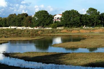 Zaton, Zadar, Property 298 - Apartments near sea with sandy beach.