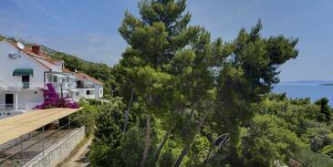 Zavala, Hvar, Property 2986 - Apartments near sea with pebble beach.