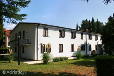 Novigrad, Novigrad, Property 3352 - Rooms with pebble beach.