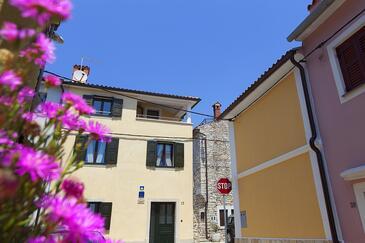 Novigrad, Novigrad, Property 3365 - Vacation Rentals by the sea.
