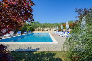 Rodinné apartmány s bazénem Bašanija (Umag) - 3402