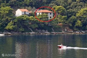 Ubli, Lastovo, Property 3463 - Apartments by the sea.
